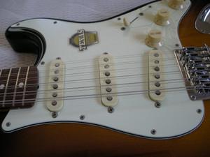 Dscn1236s